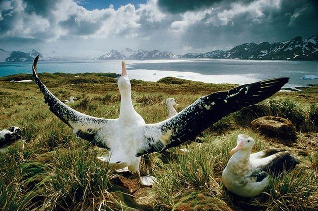 Najbolje fotografije koje tvrde da osvoji takmičenje fotografija National Geographic Traveler 2015