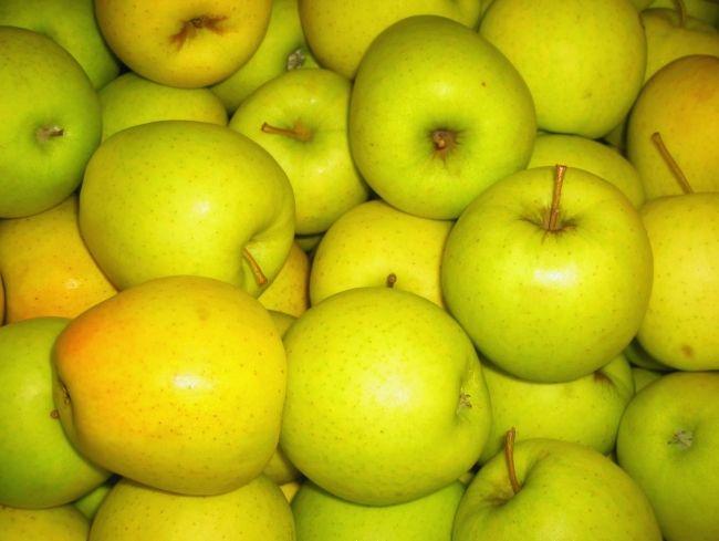 Razne zimske jabuke Golden Delicious