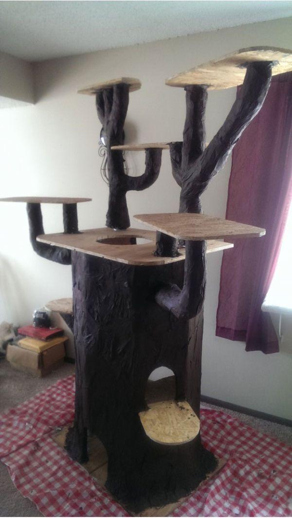 Čovjek izgradio luksuznu kuću za voljenu mačka stablo