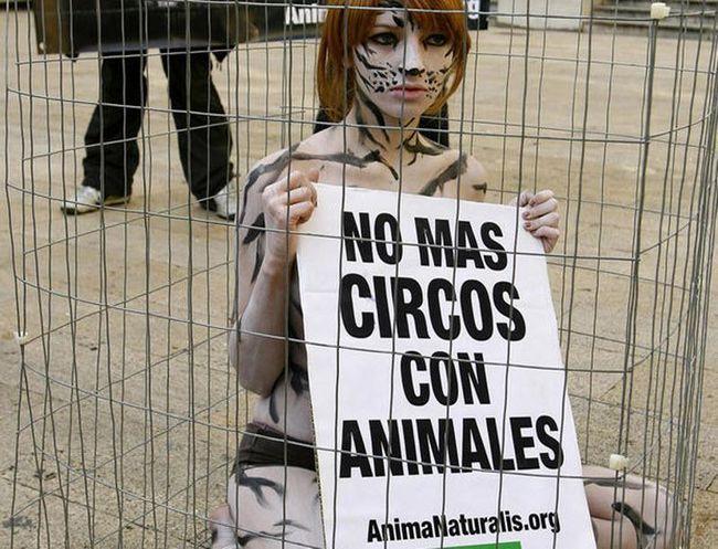 Mi smo za etički tretman životinja