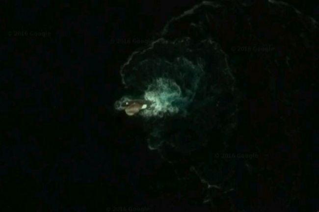 Неизвестное науке морское существо, которое появилось на Google-карте.