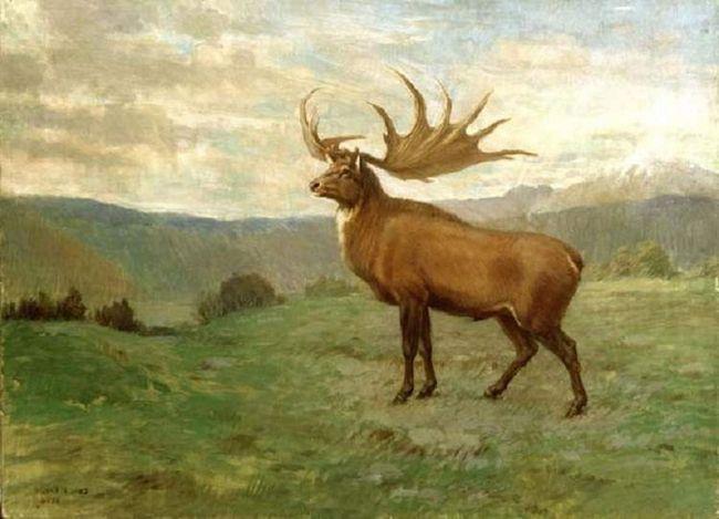 Bolsherogy jelen - předek všech jelenů.