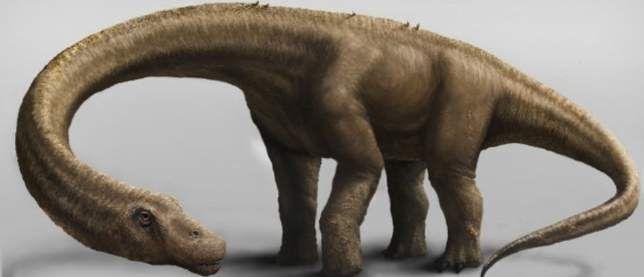 To je otkrio najveći dinosaur koji je ikada živio na Zemlji.