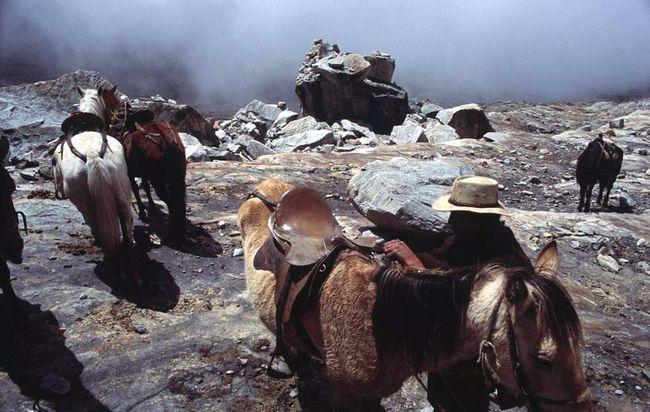 Odakle ti konji su na rubu glečera do vrha Ritakuba, pa čak 4,26 kilometara.