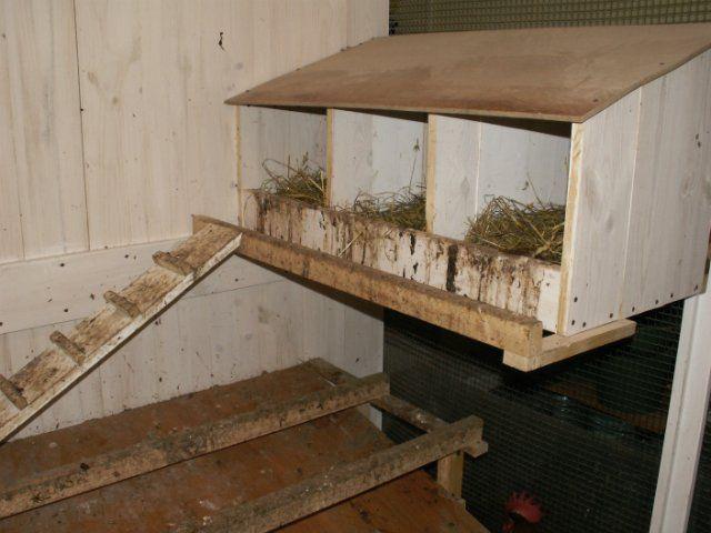 Насесты, гнезда, клетки для кур