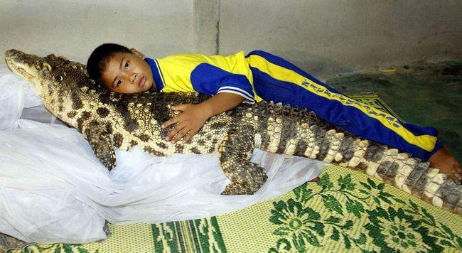 Najbolji prijatelj djeteta ... aligatora? Da - Da, čini se da ovo nije šala.
