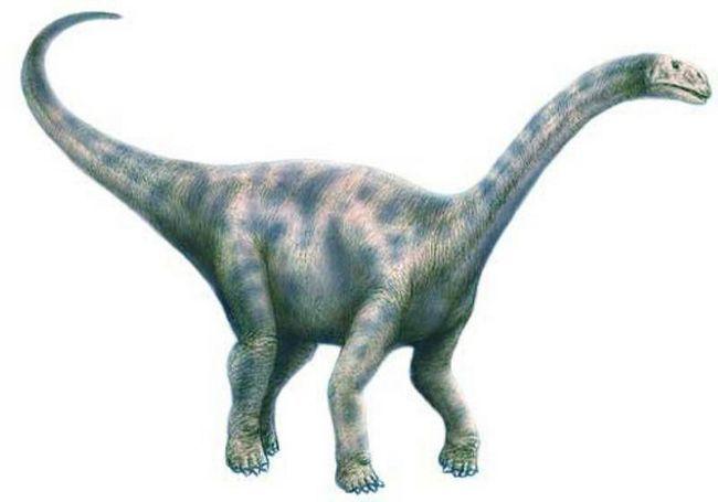 Nurozavr (lat. Nurosaurus)