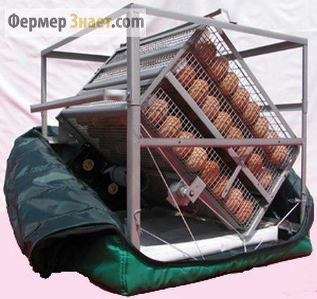 Struktura inkubatora