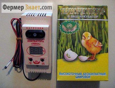 Обзор терморегуляторов для инкубатора