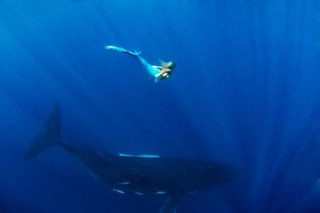 Очаровательная австралийская `русалка` Ханна Фрейзер