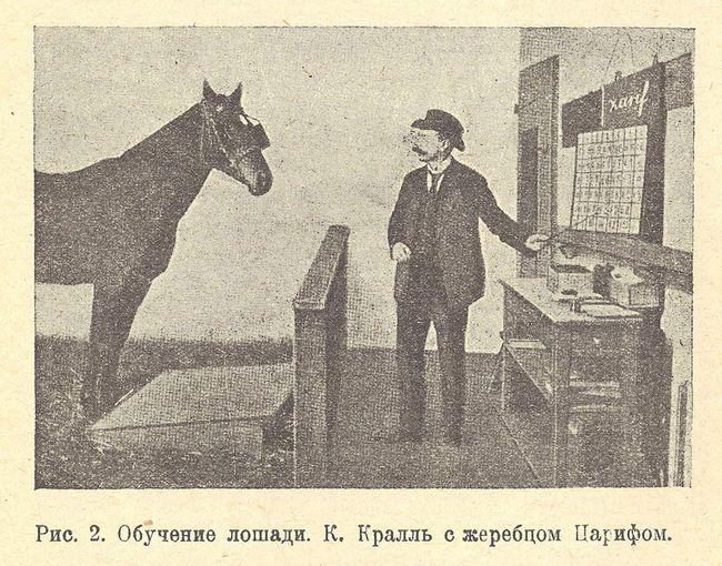 Hans sa svog učitelja - Krall.