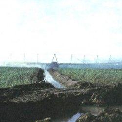 Орошение пшеницы