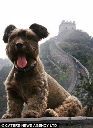 Funny cestovatel dosáhl a Velká čínská zeď