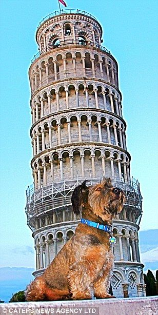 Cestovatel Oscar na pozadí věž v Pise v Itálii