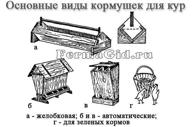 Основные виды и требования к кормушкам для кур и их самостоятельное изготовление