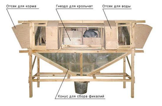 Выращивание по методу Михайлова
