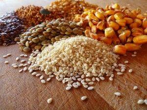 Krmivo môže byť pripravený zmiešaním pšenica, kukurica, jačmeň, mäso a kostnú múčku, slnečnicový šrot, kŕmne kvasnice a trávne múčku