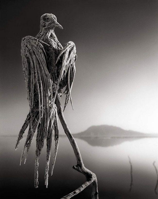 Kamena statua s pogledom na jezero Natron.