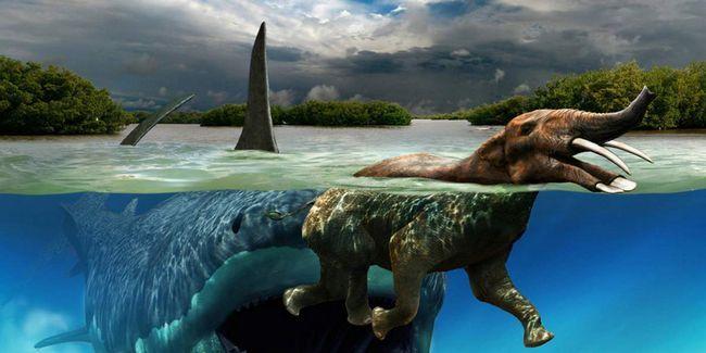 Paleokarhariasy - stanovnici Jurassic.
