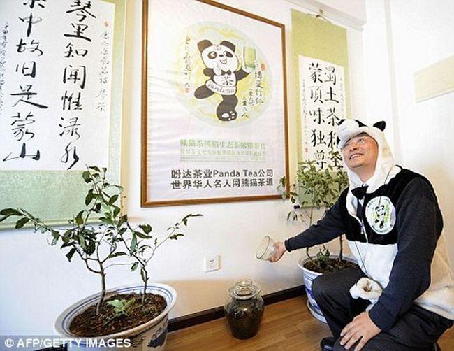 Panda Tea - najskuplji na svijetu čaja u medvjeda balege