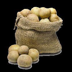 preradu krompira