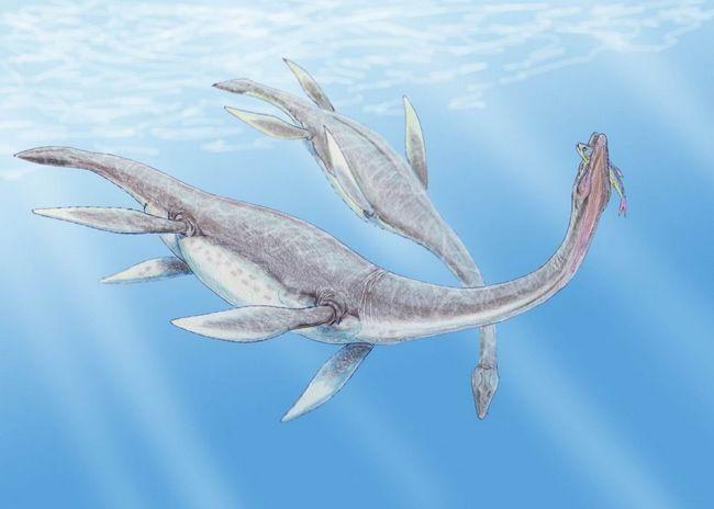 plasiosaurusa ustvari