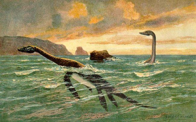 Plasiosaurusa ustvari bila prilično velika dinosaurusa. Međutim, tačan težinu svog tijela i nije instaliran naučnici