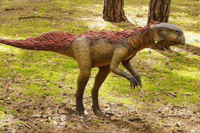 Ostaje Psittacosaurus i jaja pronađena u kući na području jedne od provincija u Kini.