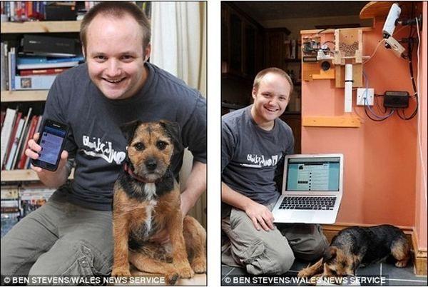 Hraniti vašeg psa na Twitteru