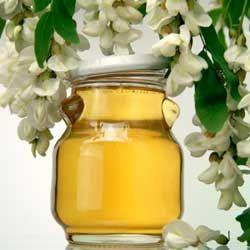 Полезные и лечебные свойства акациевого меда, описание