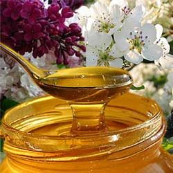 Полезные и лечебные свойства майского меда, противопоказания