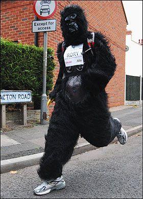 Britanska policija pokušala da zaustavi 45-godišnji defanzivac životinja Rory Coleman (Rory Coleman), počini 143 milje (230,1 kilometara) utrka u korist organizacije za zaštitu gorila stanovništva.