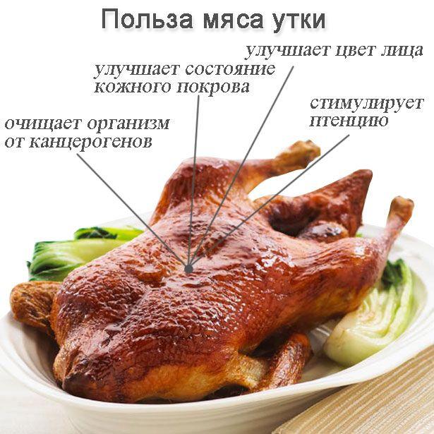 Utilizați pentru o persoană de la consumul de carne de rață