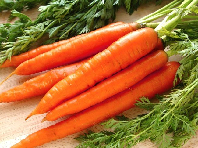 posadka morkovi pod zimu