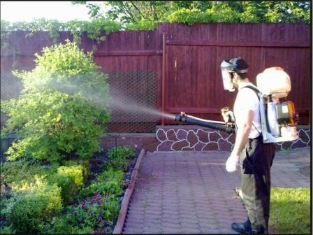 Mi koristimo bakar sulfat u vrtu