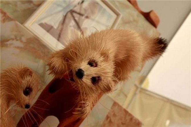 Realistična skulptura divljih životinja iz sibirskog kedraa