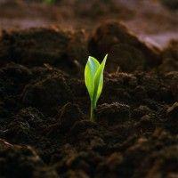 Regulacije vodnog režima tla