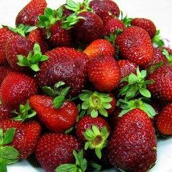 Popravak jagode