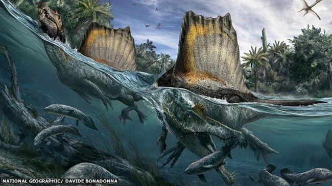 Spinosaurus o ribolovu.