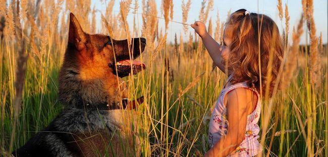 Малышка Сапфир и ее верный пес.