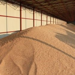 Самосогревание зерновых масс