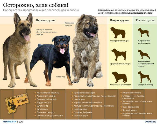Najopasniji za rase pasa ljudskih