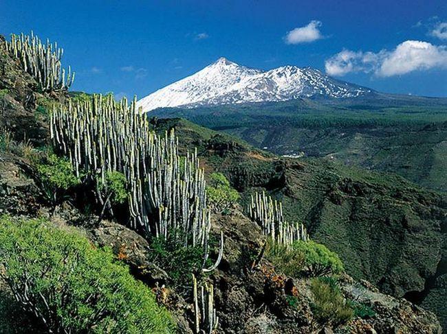 Teide (Tenerife, Španija)