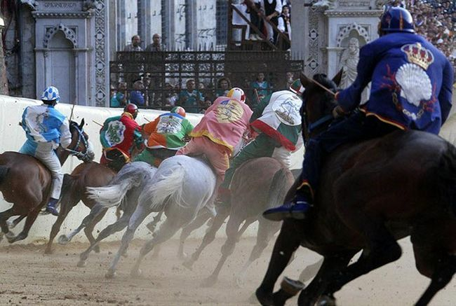 Palio di Siena konja rase