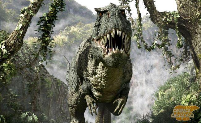 Tyrannosaurus T-Rex