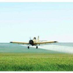 Смеси на озимой пшенице – авиационным способом