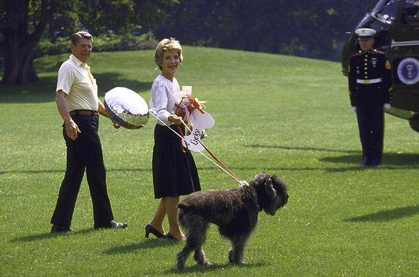 Američki predsjednik Ronald Regan i stočarski pas Flandrijski