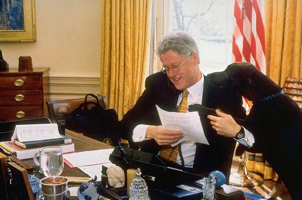 Bil Klinton sa čokoladom labrador Buddy