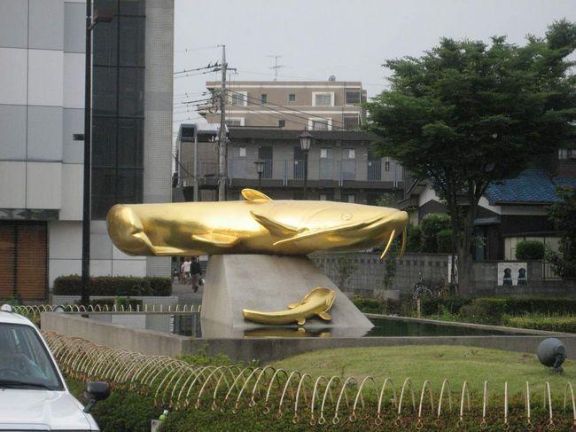 Памятник амурскому сому в Йосикаве, Япония.