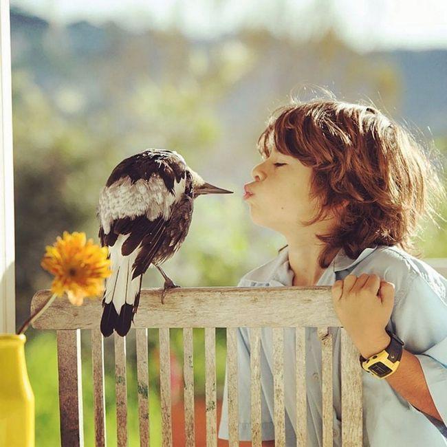 Deca volela novog ljubimca.